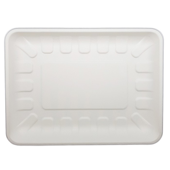 Sugarcane Bagasse Textured Trays
